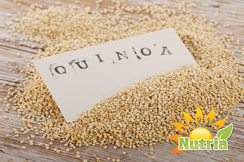 Nutria Organic Royal White Quinoa 4 (1)